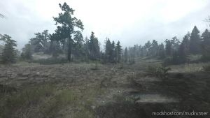 Forest Roads Map 2