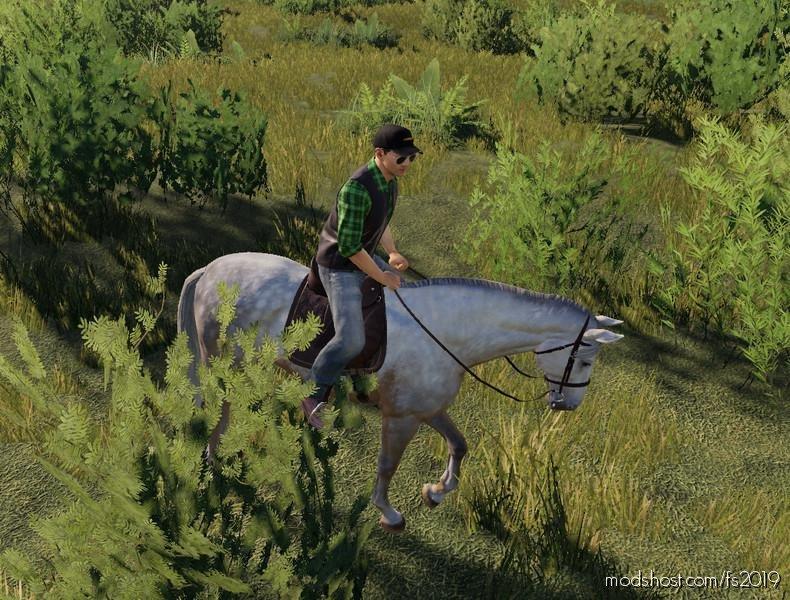 Horse for Farming Simulator 2019