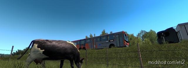Rjmap [1.36.X] for Euro Truck Simulator 2