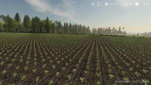 Seasons GEO: Central Poland for Farming Simulator 2019