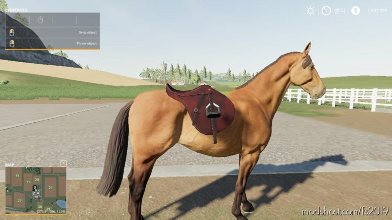 Saddle Pickupable [Beta] for Farming Simulator 19