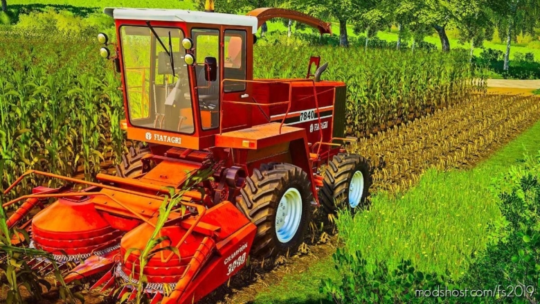 Corn Texture for Farming Simulator 19