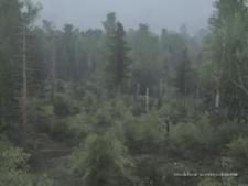 Siberian Forest 2 Map V27.09.20 for MudRunner