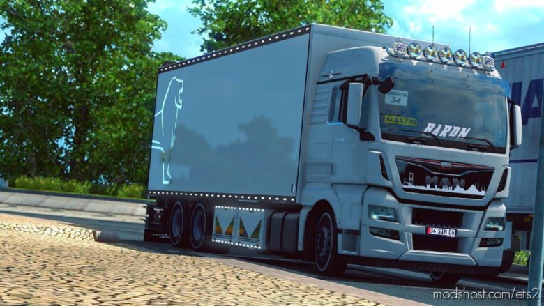 MAN TGX Euro 6 Thermo Truck [1.38] for Euro Truck Simulator 2