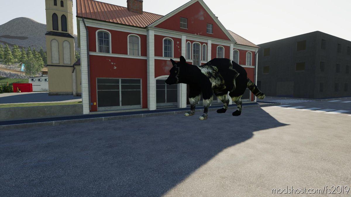 Raton Laveur for Farming Simulator 19