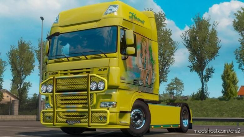 DAF 105 & 106 Bullbar (Skinnable) V1.2 [1.39.X] for Euro Truck Simulator 2
