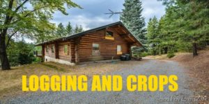Logging And Crops for Farming Simulator 19