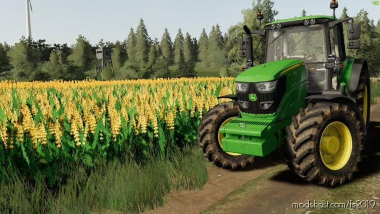 Tekstura Lubinu for Farming Simulator 19