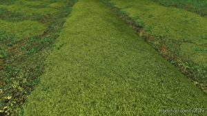Texture Of Straw, HAY, Grass for Farming Simulator 19