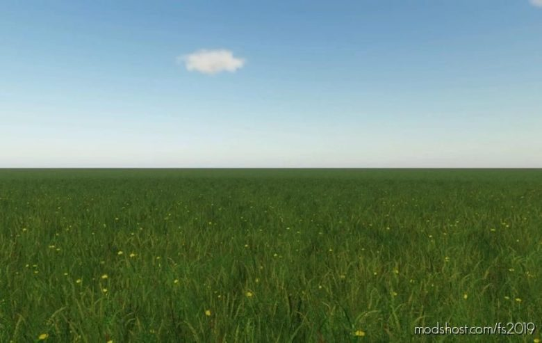 16X ONE Field Map for Farming Simulator 19