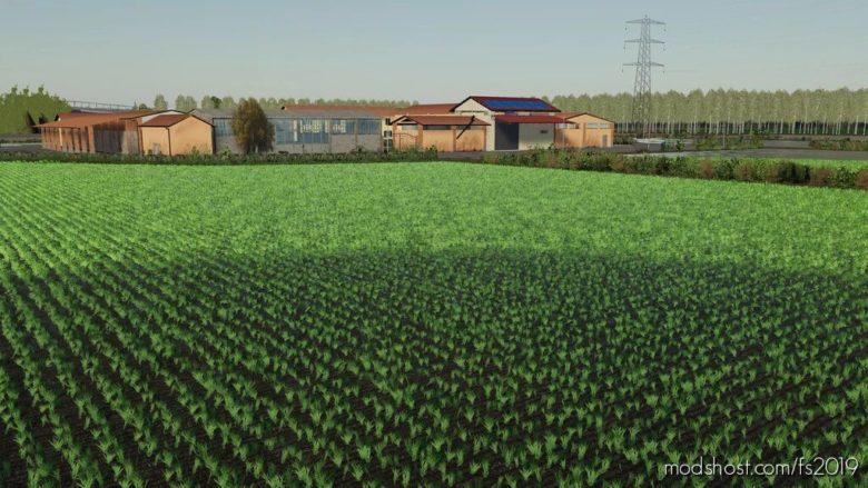 Italian Rice XL V1.1 for Farming Simulator 19