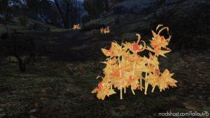 Glow XP Ingredients Brainbombs Berrymentats Cranberryrelish for Fallout 76