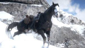 Gang Horses for Red Dead Redemption 2