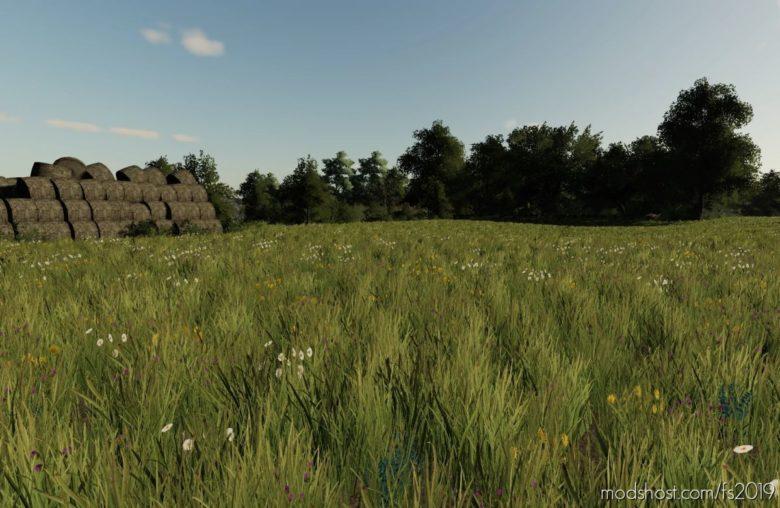 Erlengrat Grass for Farming Simulator 19