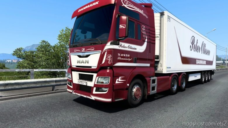 Peter Ottesen Combo Skin for Euro Truck Simulator 2