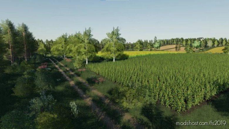 Szwagrowice Map for Farming Simulator 19