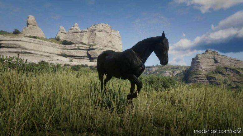 Nokota for Red Dead Redemption 2